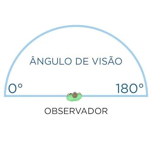 Imagem de como funciona o campo de visão